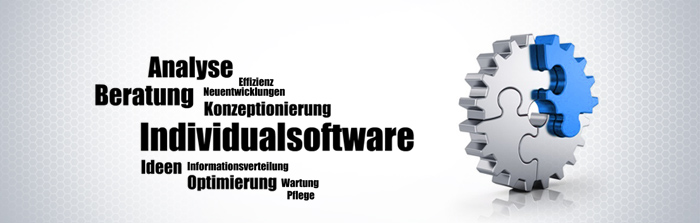 individualsoftware2